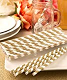 Fashioncraft 'Perfect Plain' Collection Matte Paper Straws, Gold/White