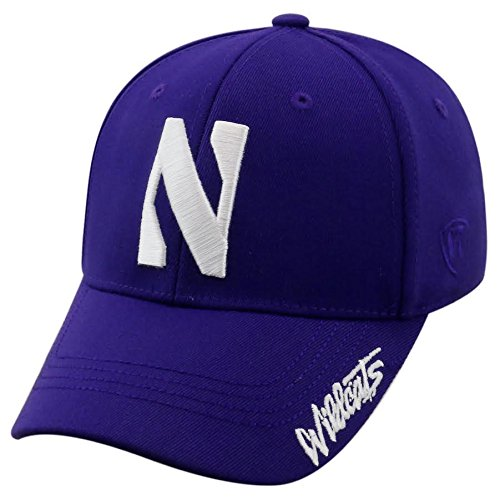 Northwestern Wildcats Fitted Hats a34c190e63a6