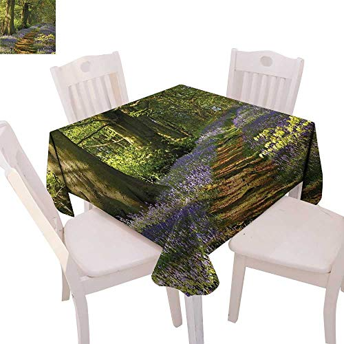 "cobeDecor Woodland Patterned Tablecloth A Carpet of Bluebells Spreads Through Woodland in Staffordshire England Dust-Proof Tablecloth 60""x60"" Green Purple Brown"