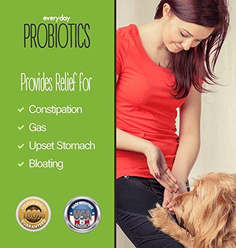 Humane Everyday Probiotics for Probiotics