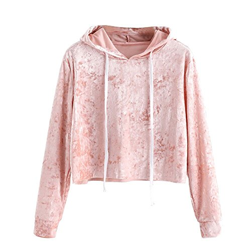 Baggy Crop (Women Vintage Velvet Hooded Sweatshirt Crop Tops Casual Long Sleeve T Shirt Blouse by Qisc (L, Pink))