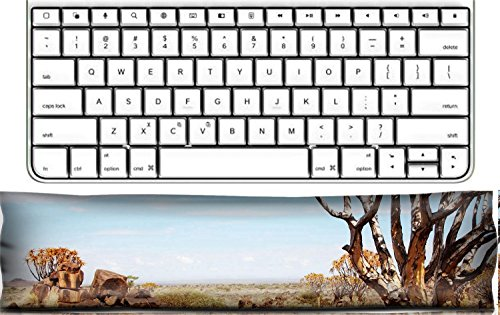 Quiver Rest - Luxlady Keyboard Wrist Rest Pad Office Decor Wrist Supporter Pillow Landscape with quiver trees Aloe dichotoma Namibia IMAGE ID 3759678