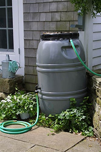 - Painted Rain Barrel - Nantucket Grey