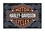 Harley-Davidson 20 x 30 Bar & Shield Bikers Welcome Tufted Rug NW269217