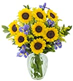 Sunny Iris Bouquet: 8 Sunflowers, 5 Blue Iris, 5 Yellow Solidago Asters and Lush Greens with Vase - by KaBloom