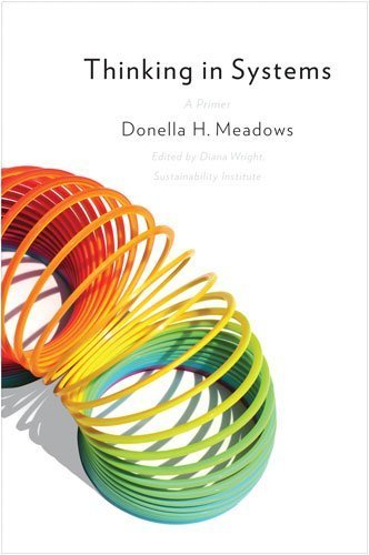 Thinking in Systems: A Primer by Donella H. Meadows (2008) Paperback