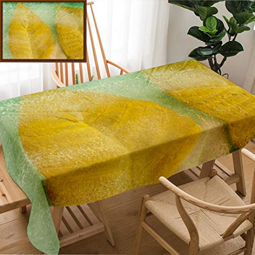 Skocici Unique Custom Design Cotton and Linen Blend Tablecloth Frozen Flora Natural Background Yellow Poinsettia Leaves Frozen Into A Block of IceTablecovers for Rectangle Tables, 70