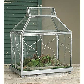 Table Top Terrarium From Colonial Tin Works, One Color