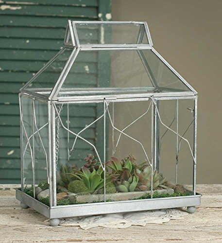 Table Top Terrarium from Colonial Tin Works, One Color by Colonial Tin Works