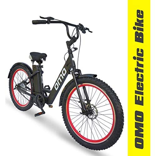 LD Omobikes Model E0 Electric Cycle with Removable Battery Un