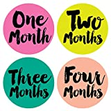 Little Miss Poet Monthly Stickers - Baby Girl - Months 1-12