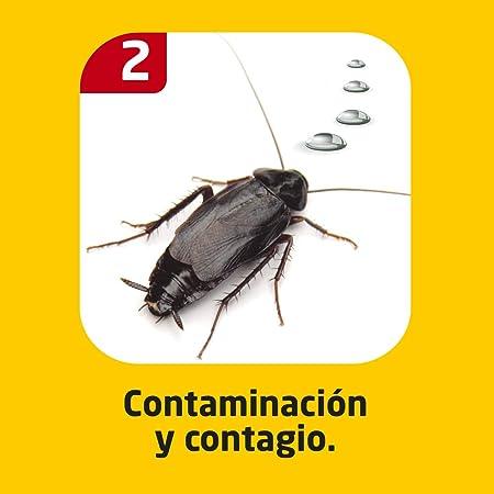 Cucal Jeringa contra cucarachas