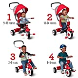 Radio Flyer 4-in-1 Stroll 'N Trike, Red Toddler
