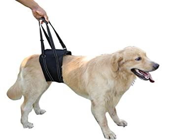 Dog Lift Harness Sling ACL Brace Limping Help Up Aid Veterinarian Approved  for Cruciate Ligament Support,Canine Arthritis,Rehabilitation,Poor
