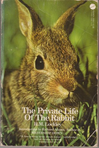 The Private Life of the Rabbit