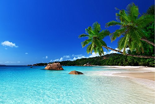 "tropical paradise beach ocean sea palm summer - Art Print On Canvas Rolled Wall Poster Print - 36""x24"" (90x60cm) - Unframed from GLITZFAS"