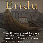 Eridu: The History and Legacy of the Oldest City in Ancient Mesopotamia | Charles River Editors