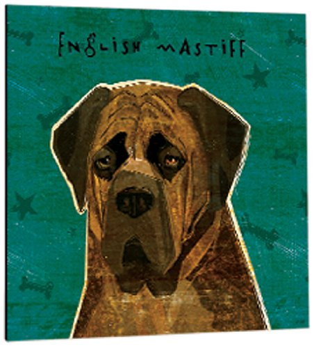Mastiff Magnet (Tree-Free Greetings 61037 Premium Square Eco Magnet, 3.5-Inch, Brindle English Mastiff)