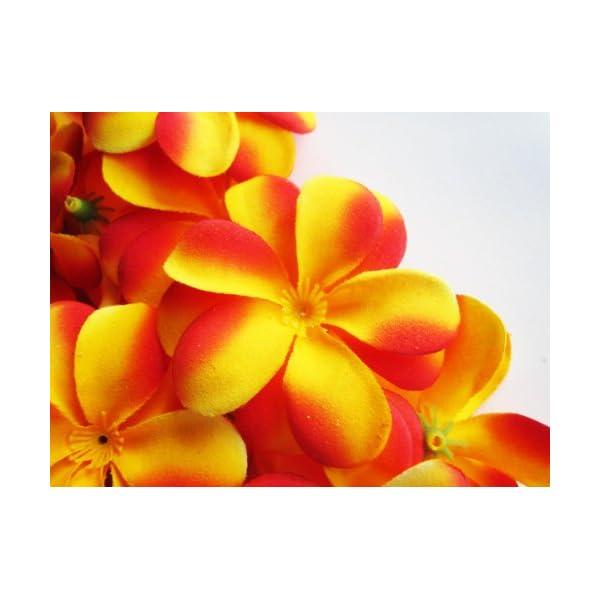 (100) Yellow Red Hawaiian Plumeria Frangipani Silk Flower Heads – 3″ – Artificial Flowers Head Fabric Floral Supplies Wholesale Lot for Wedding Flowers Accessories Make Bridal Hair Clips Headbands Dress