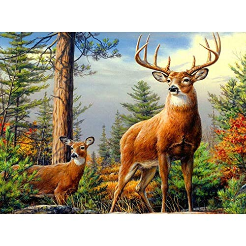 (Cross Stitch - 5D DIY Full Diamond Painting Sale Diamond Embroidery&Quot;Forest Deer&Quot;Cross Stitch Home Decor Rhinestone Daimand Mosaic Picture)