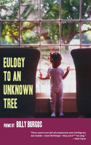 Eulogy to an Unknown Tree