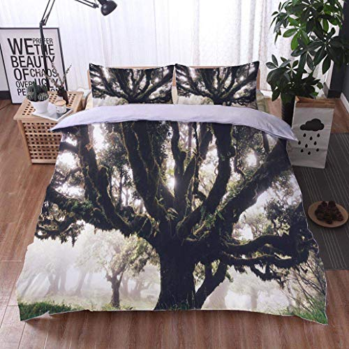 - VROSELV-HOME King Duvet Cover Set,Mysterious 1000 Years Old Laurel Trees On Madeira Island,Soft,Breathable,Hypoallergenic,Bedding Set Cover with 2 Pillow Shams Decorative Quilt Cover Set
