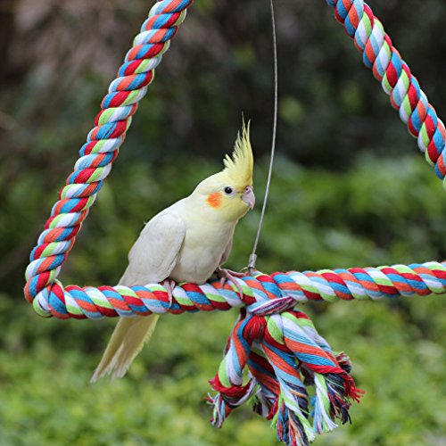 KINTOR Medium Triangle Rope Swing Bird TOY Parrot Cage Toys Cages Conure African Grey by KINTOR (Image #5)