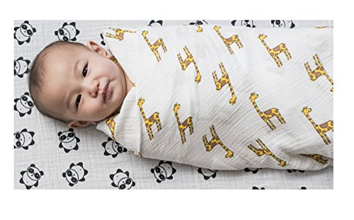"Muslin Swaddle Blankets | Baby Blankets | 100% Cotton | 47"" x 47"" 