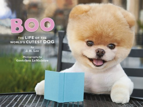Boo: The Life of the World's Cutest - Boo.com Boo