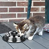 SunGrow Stainless Steel Feeding Bowl (32 oz) for Dogs & Cats : Anti-Skid Rubber Base: Rust Resistant: Dishwasher Safe & Easy to Clean