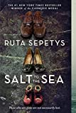 Salt to the Sea: more info