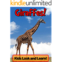 Giraffes! Learn About Giraffes and Enjoy Colorful Pictures - Look and Learn! (50+ Photos of Giraffes)