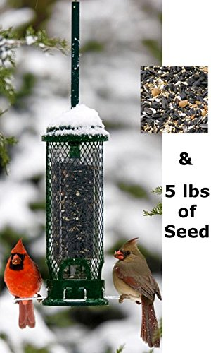 Squirrel Buster Mini Squirrel Proof Bird Feeder with Seed