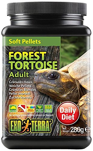 Exo Terra Soft Adult Forest Tortoise Food, 9.8-Ounce ()