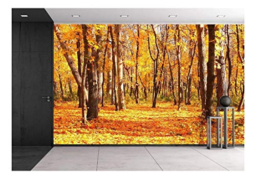 wall26 - Beautiful Landscape - Road in Autumn Forest - Removable Wall Mural | Self-Adhesive Large Wallpaper - 100x144 inches