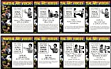 WING CHUN KUNG FU DVD SET - VIDEOS 1 to 8