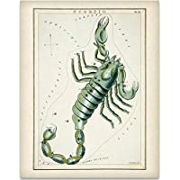 Scorpio Zodiac Antique Constellation Plate - 11x14 Unframed Art Print - Great Decor and Gift for Birthday and Astrology Enthusiasts Under $15