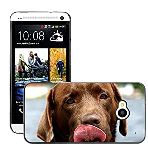 Super Stella Slim PC Hard Case Cover Skin Armor Shell Protection // M00146307 Dog Canine Labrador Retriever // HTC One M7