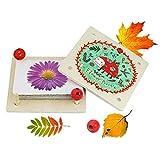Sunshinetimes Wooden Flower Leaf Press Art DIY Kit Early Learning Toys for Children Gift, Perfect for Homeshcool Groups Study Tool