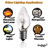 Salt Rock Lamp Bulb 10 Pack + 2 Free 15 Watt