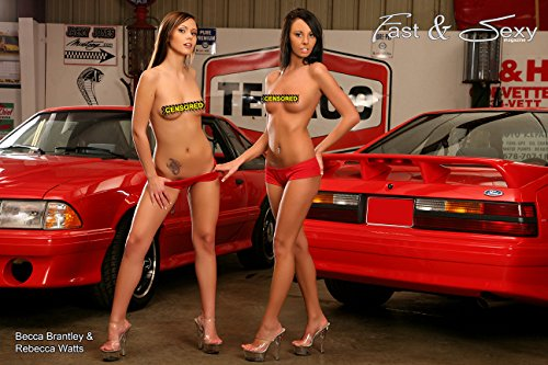 Ford Mustang Cobra Model (2 Models with 2 Cobra R Mustangs Topless Poster)