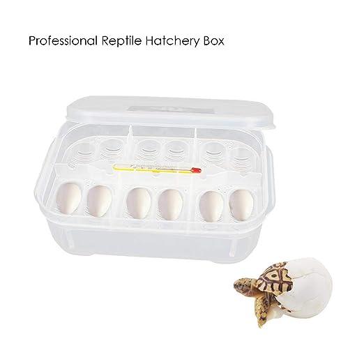 Fdit Socialme-EU Lagartos Reptiles Huevos Incubadora Bandeja Caja con Term/ómetro para Incubar Serpientes y Geckos 12 Grids