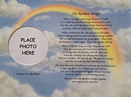 Amazoncom In Memory Of Pet Rainbow Bridge Memorial Poem