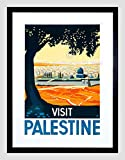 TRAVEL PALESTINE MOSQUE CITY WALL HOLY LAND TREE FRAMED ART PRINT MOUNT B12X6498