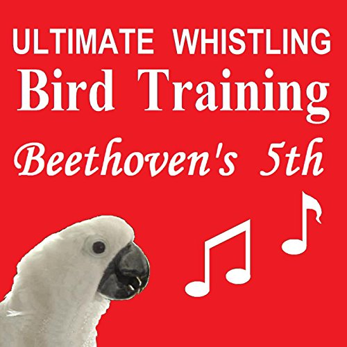 Bird whistling downloads