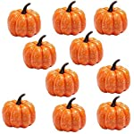 EORTA-10-Pack-Decorative-Pumpkins-Mini-Artificial-Pumpkins-Orange-Foam-Halloween-Props-Small-Hand-Toys-for-Kids-to-Play-Home-Party-Shop-Decor