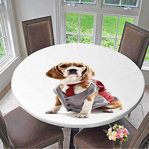 Mikihome Elasticized Table Cover Serious Business Dog in Elegant Costume Machine Washable 40