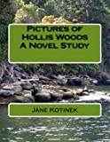 Pictures of Hollis Woods a Novel Study, Jane Kotinek, 1475273118