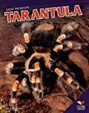 Tarantula Paperback, Ruth Strother, 1624030173