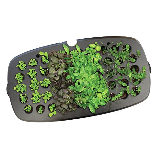 Starting Seeds Hydroponic - AeroGarden Seed Starting System for Bounty, Ultra & Extra Models
